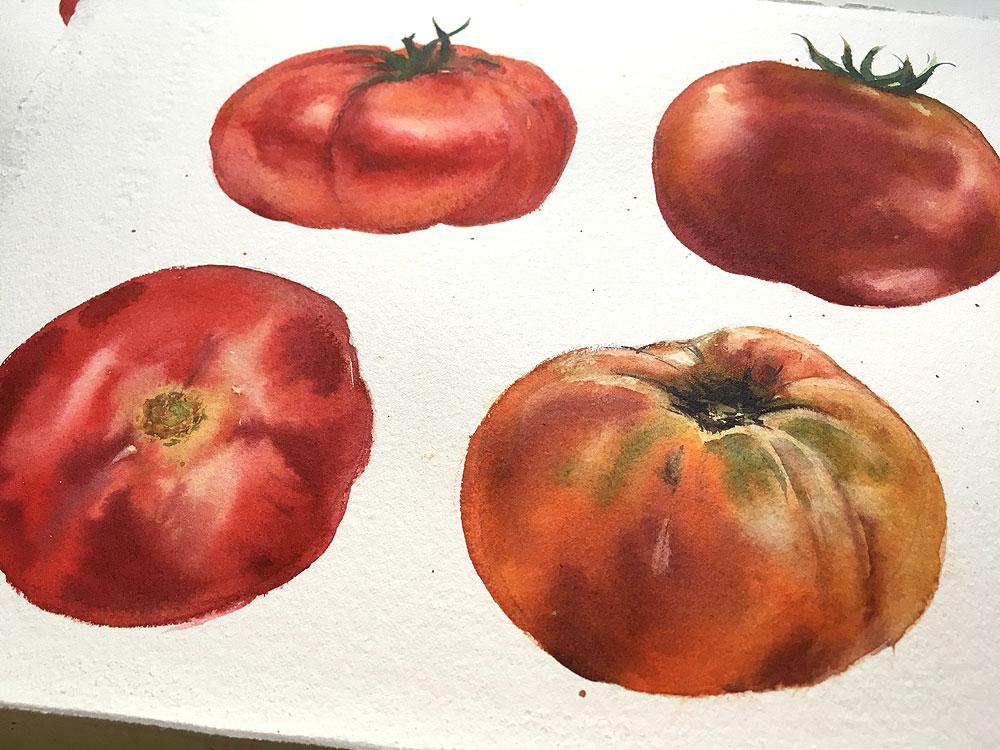 tomato2_bx